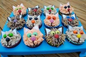 SPCA Kitty Cupcakes