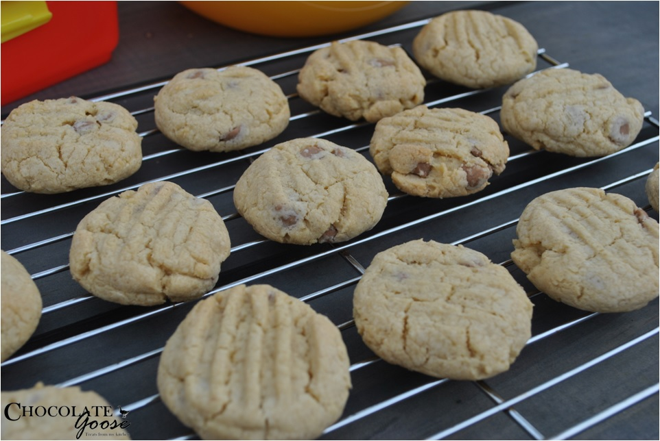 Caramel Chip Cookies